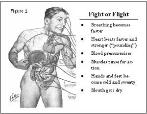 fight_or_flight