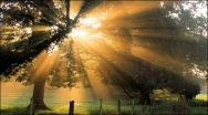 autumn_sunrays_wraxall_justin_myers